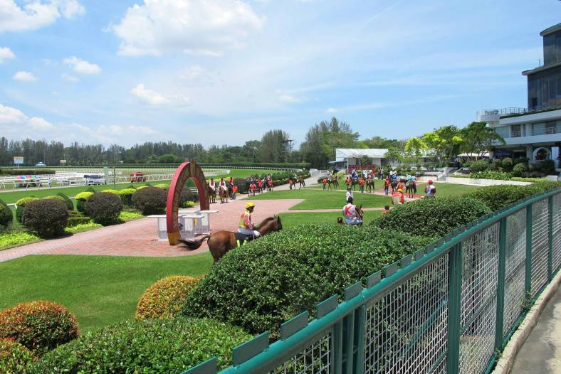 The horses are paraded by their riders before each race starts. Chui Ling was explaining that skinny horses were sometimes better at short distances while the larger ones better at long distance races.