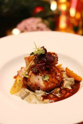 Harissa Marinated Chicken Roulade with Mushroom Stew