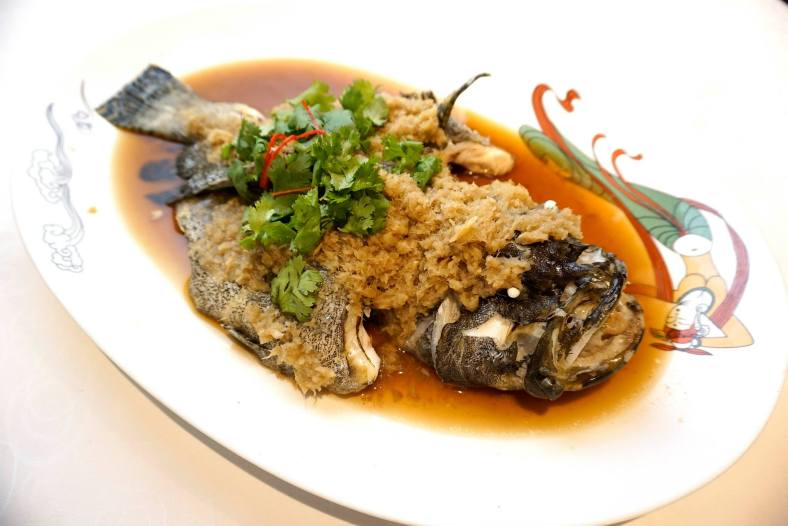 Steamed live tiger-dragon grouper with scallion & ginger
