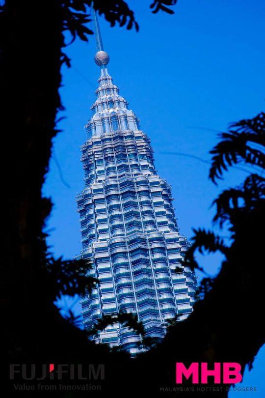 KL landmark & frame - using the trees to frame one of the Petronas Twin Towers