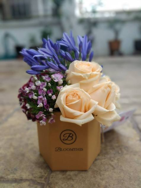Haagen Daz Apricot Lavender Lychee Raspberry Rose (5)