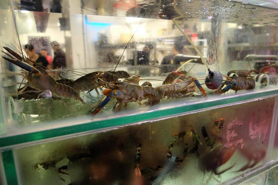 Brolly Crab Factory Menara Felda Kuala Lumpur (3)