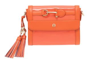 Aigner Spring Summer Handbag (76)
