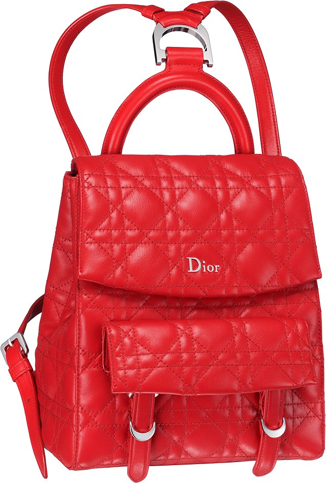 dior-autumn-winter-2016-bags-35