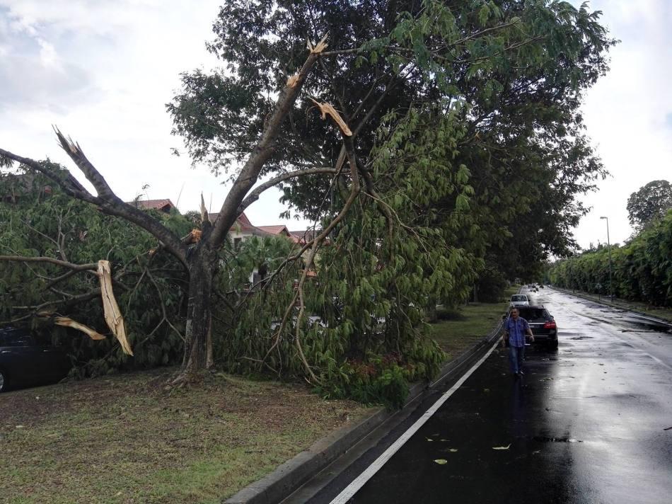 storm-damage-in-petaling-jaya-selangor-12