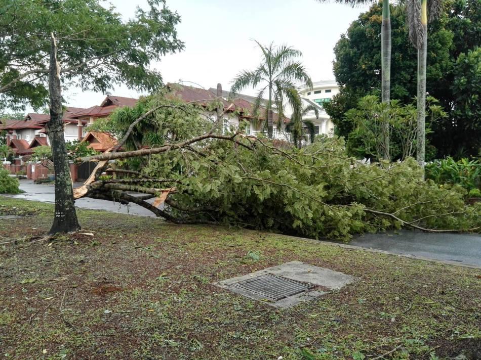 storm-damage-in-petaling-jaya-selangor-7